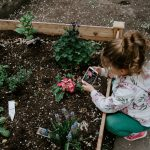 Las plantas influyen y la jardinería educa